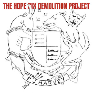 The Hope Six Demolition Project (第六希望摧毁计划)